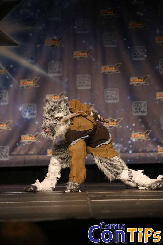 FanX 2015 Cosplay Contest (131)