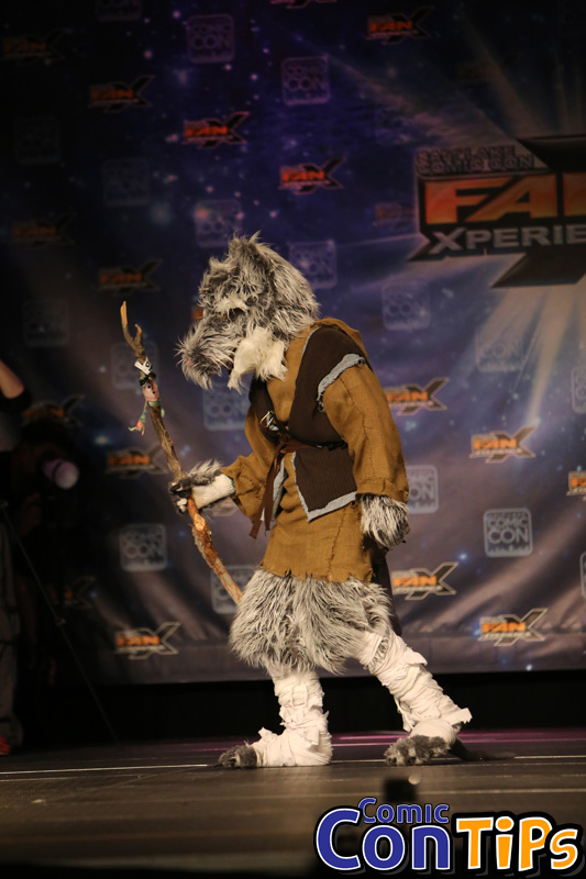 FanX 2015 Cosplay Contest (132)