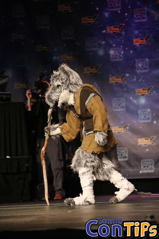 FanX 2015 Cosplay Contest (133)