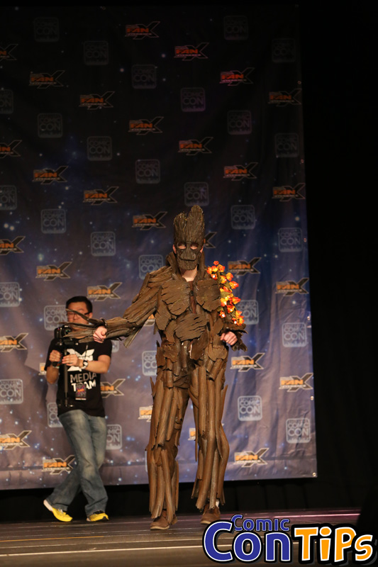 FanX 2015 Cosplay Contest (138)