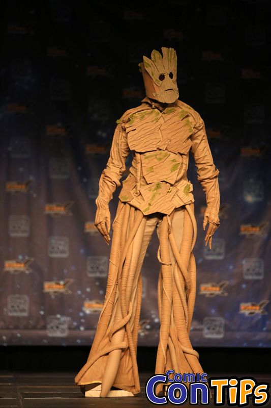 FanX 2015 Cosplay Contest (209)