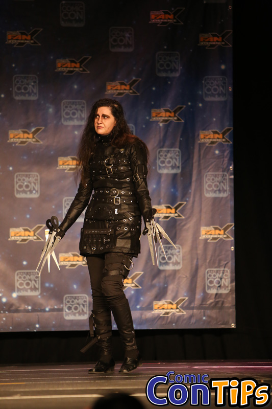 FanX 2015 Cosplay Contest (219)