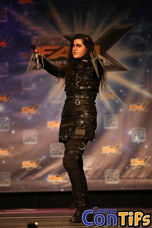 FanX 2015 Cosplay Contest (221)