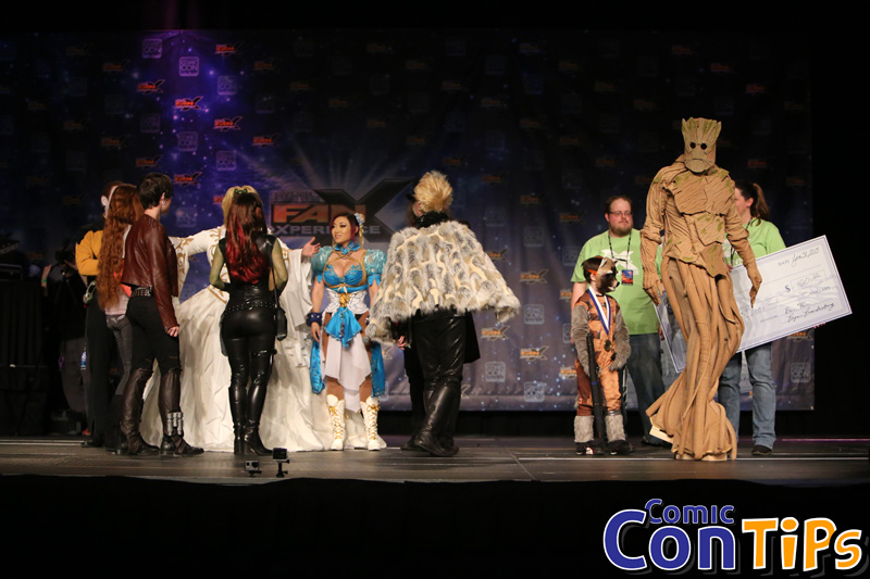 FanX 2015 Cosplay Contest (329)