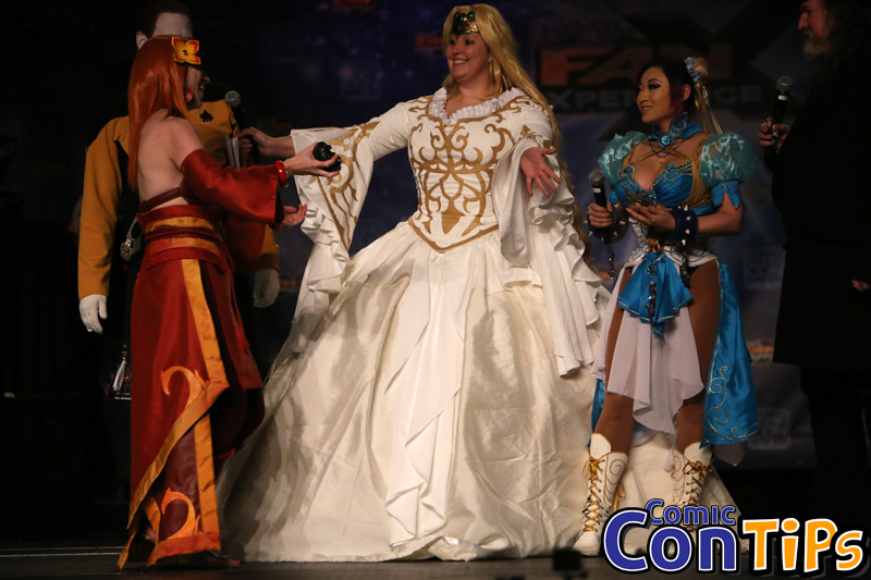 FanX 2015 Cosplay Contest (342)