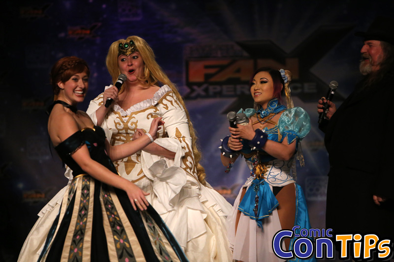 FanX 2015 Cosplay Contest (346)