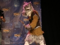 FanX 2015 Cosplay Contest (129)