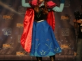 FanX 2015 Cosplay Contest (146)