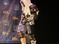FanX 2015 Cosplay Contest (292)