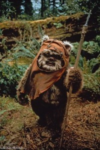 Comic Con Tips Wicket