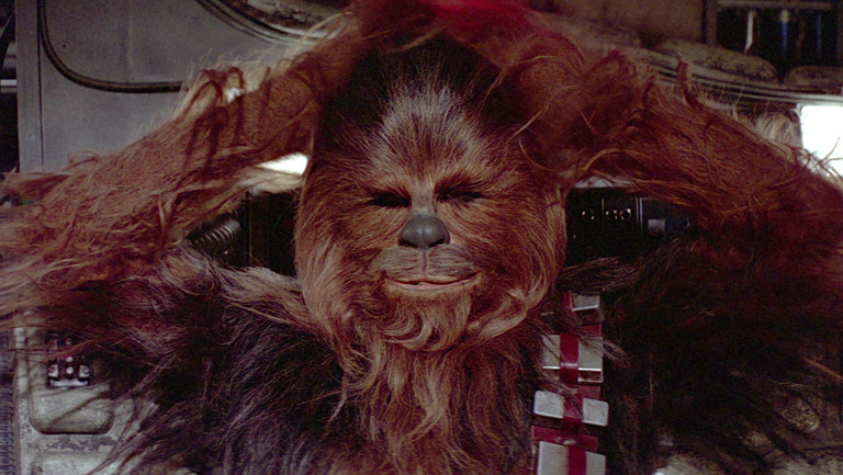 Image result for chewbacca relaxing